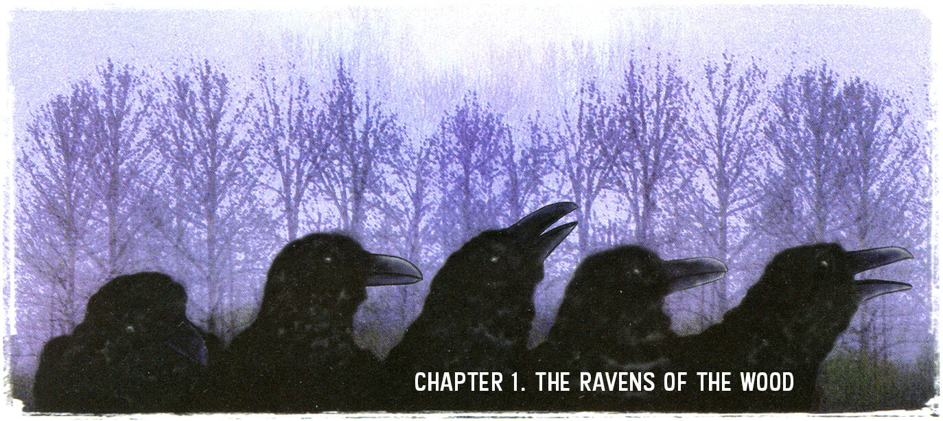 Chapter 1. The Ravens of the Wood